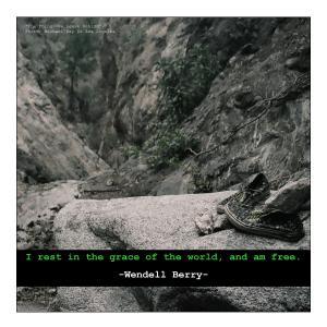Quote-MRDLA-Wendell-Berry